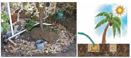The water can also be discharged into a mulch bed around a tree. Source: ECOSAN UE (2007)